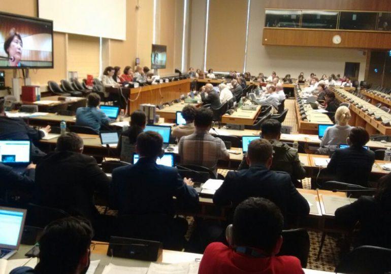 Comité Ambiental presentó ante la ONU informe sobre mecanismos de participación