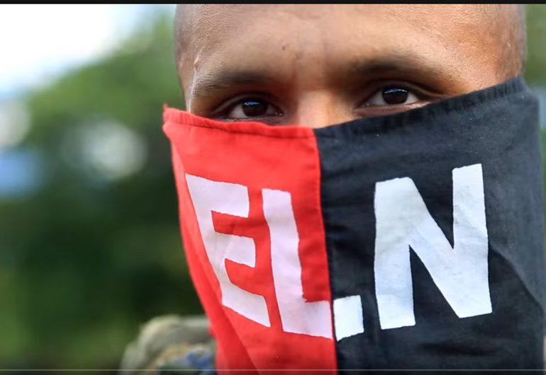 ELN propone misión de verificación para cultivos de uso ilícito