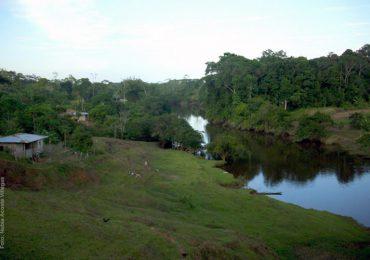 Comandos de la Frontera quieren liquidar la ZRC Perla Amazónica