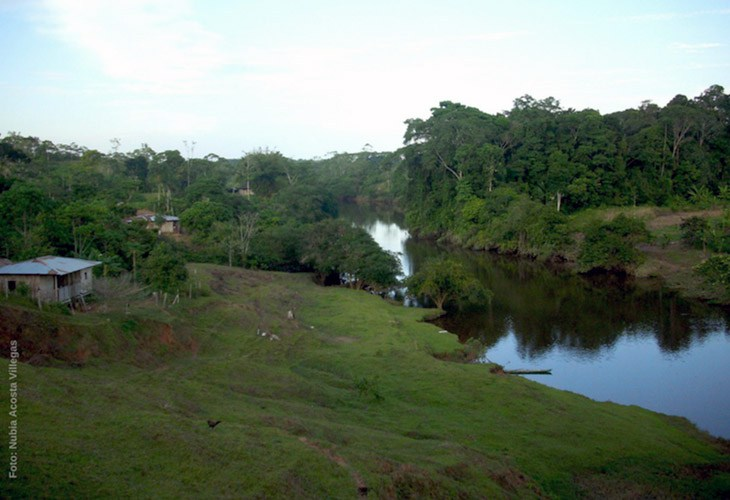 Militares habrían iniciando incendio en vereda de Puerto Asís, Putumayo según los campesinos
