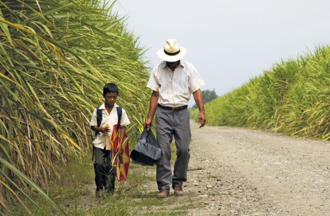 "Con ""La tierra y la sombra"" inicia la 2da Semana del Cine Andino"