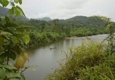Fue asesinado Mario Chilhueso, líder campesino del Naya