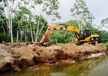Deforestación aumentó un 23% en Colombia: IDEAM
