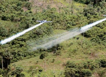 En Colombia fracasó la aspersión con Glifostado desde hace 40 años: ASCAMCAT