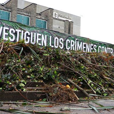 La Amazonía está perdiendo 293 hectáreas cada día