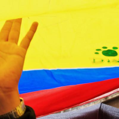 Implementación del acuerdo de paz no se está asumiendo como un compromiso de Estado