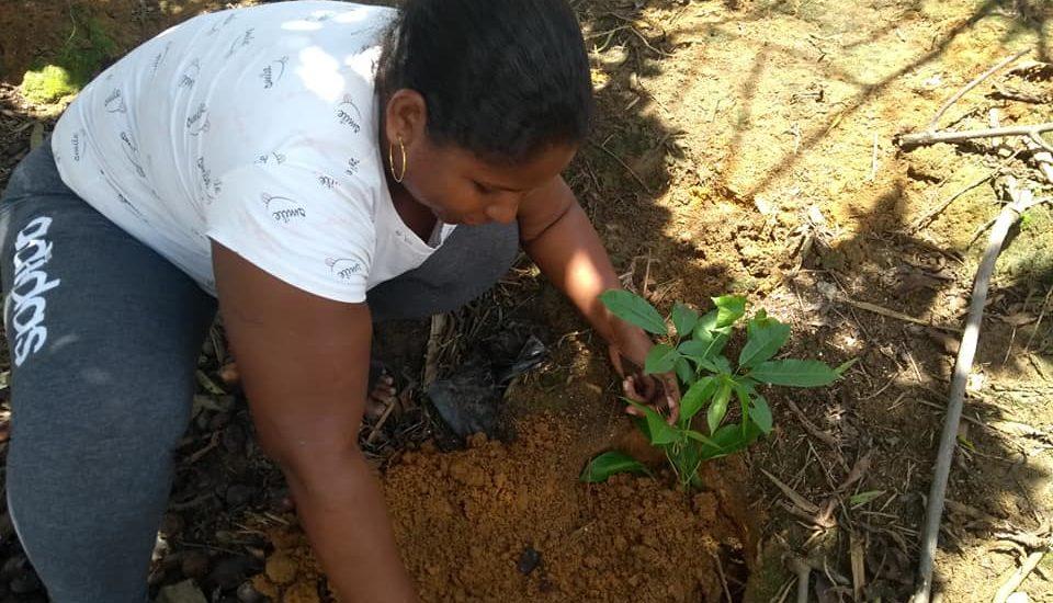 Desde el feminismo campesino trabajan más de 300 mujeres de las ZRC