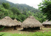 Las prácticas turísticas que más dañan los ecosistemas según Pueblos Indígenas de la Sierra