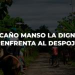 En Caño Manso la dignidad enfrenta al despojo