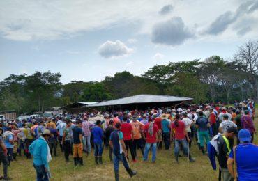 Medidas de La Fiscalía para proteger Parques Naturales afecta a los pequeños campesinos