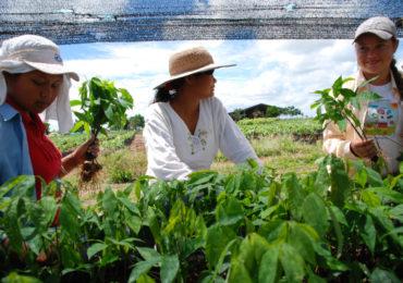 Vivimos la guerra, construimos la paz: La historia de lucha por los derechos humanos de las mujeres rurales colombianas