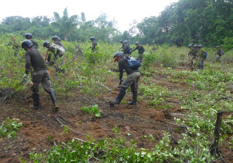 Ejército pone en riesgo a población de Piamonte, Cauca