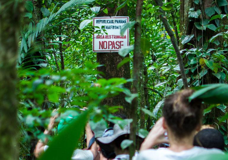 A pocos kilómetros de base militar binacional funcionaría una pista del narcotráfico en Chocó