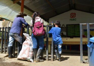 Esperamos que en Mutatá encontremos la paz: excombatientes de Ituango
