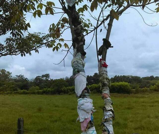 """La memoria ambiental para el """"retorno in situ"""""""