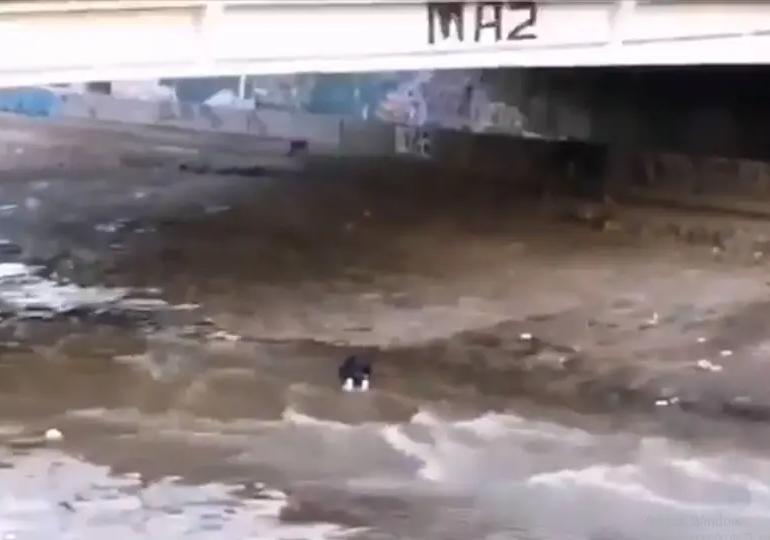 Carabinero a prisión por arrojar a joven al río en Chile