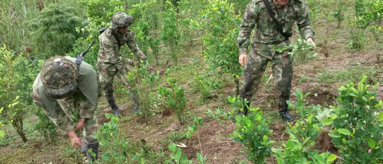 Comunidades del Río Guayabero denuncian agresiones de la Fuerza Pública en operativos de erradicación forzada