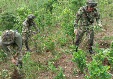 Militares dispararon contra la población civil por erradicación forzada