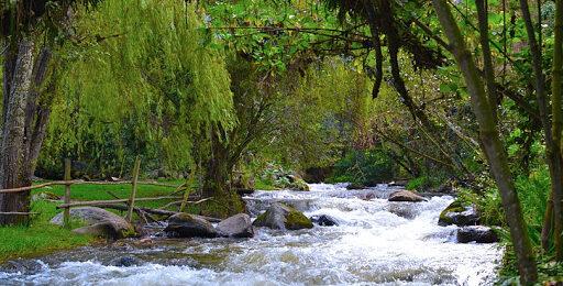 Río Neusa en riesgo por proyecto minero